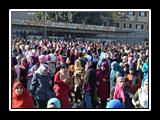 وقفة إحتجاجية فى جامعة بنها رفضاً لقرار تهويد القدس