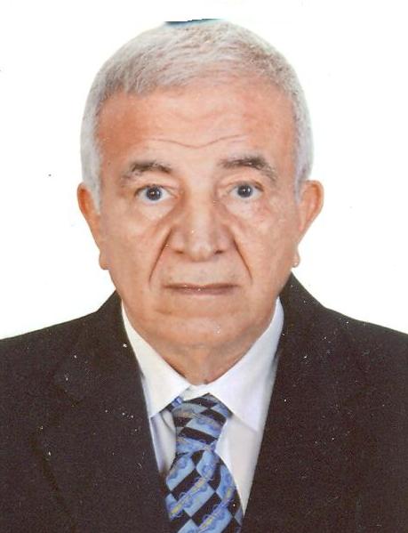 El-Sayed Mohamed Hassan Shokr