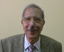 Mohamed Kassem Mohamed Khalifa