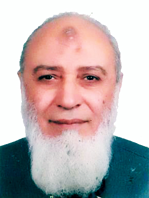 Talat Mohamed Elhoseny