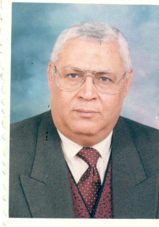 Mohamed Aly SaadAllah Ibrahim