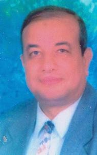 Aly Abd ElSalam Aly
