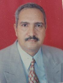 Mohamed Naguib Mohamed Ibrahim
