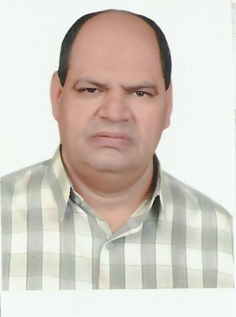 Gamal mohamed Abo Elwafa