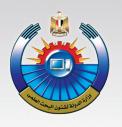 برنامج التعاون المصري الجنوب أفريقي