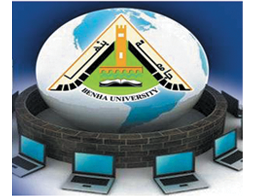 Technical Support for the University Internet Network