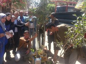 تشجير مداخل وشوارع مدينة ابوزعبل