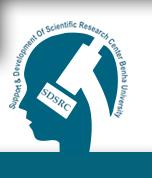 ورشة عمل دعم ومتابعة المشروعات البحثية لشباب الباحثين لجامعة بنها