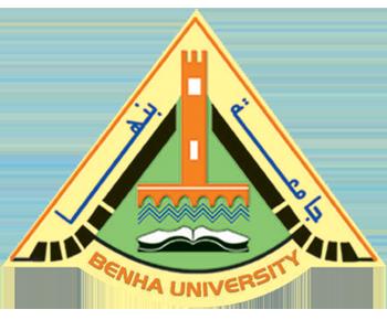 دورات تدريبية فى المراجعة الخارجية والادارة الجامعية للباحثين والاداريين بجامعة بنها