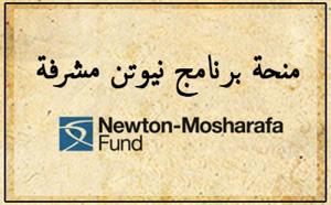 Newton/Moshraffa Fund calls - Deadline 28th September 2015