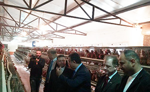 The Minister of Manpower and the University President inspect the Plant Nurseries in Moshtohor