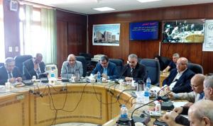Prof. Dr. Hesham Abu El Enin honors some Faculty Members