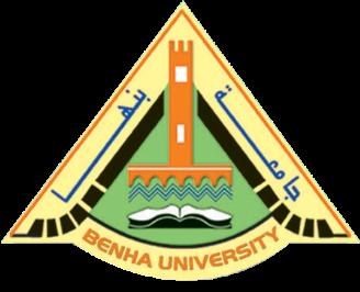 السيدة/ أمينة محمد أنور مستشاراً مالياً لرئيس جامعة بنها