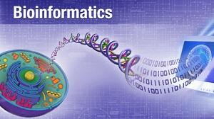 دورة تدريبية فى البيو انفورمتكس وآفاق تطبيقاتها في الأنظمة البيولوجية المختلفة