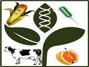 4 أبريل .. المؤتمر الدولى الرابع لتطبيقات التقنية الحيوية فى الزراعة