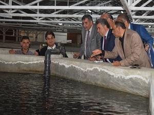 افتتاح المزرعة السمكية بزراعة بنها