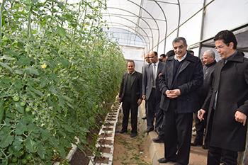 المغربي في جولة تفقدية للامتحانات والمزرعة السمكية والصوب الزراعية بكليتي الطب البيطري والزراعة