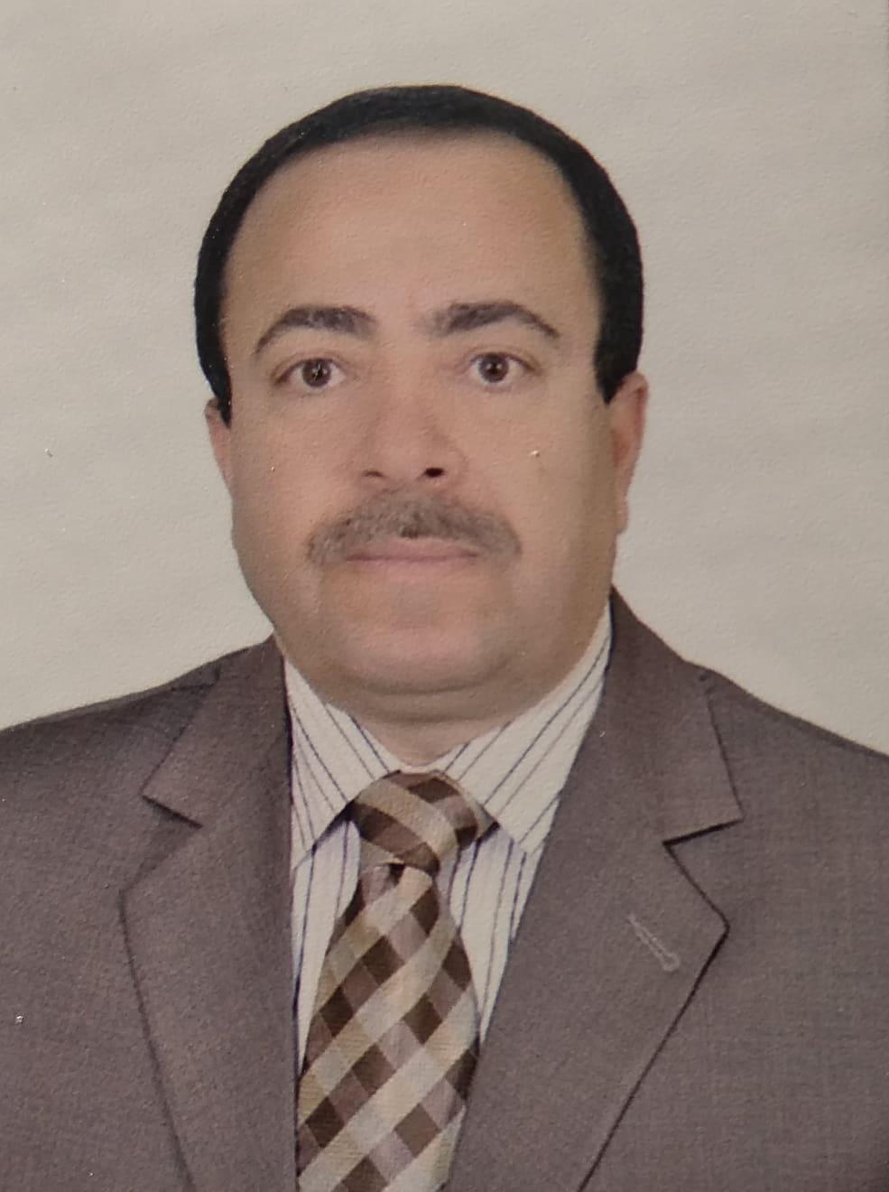Hamed Mohamed ElAdel