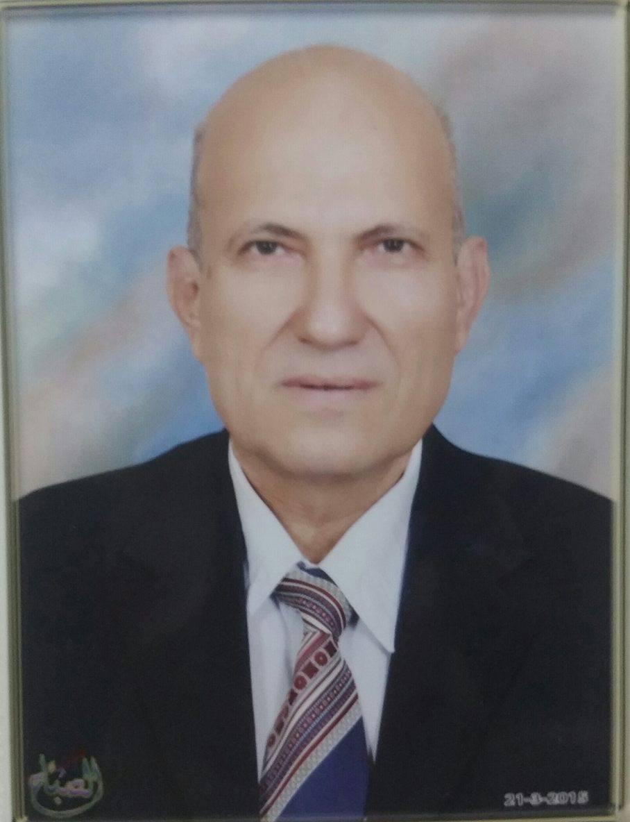 Hassan Mahmoud Emara