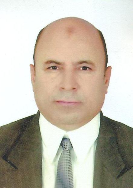 El-Sayed Almosallamy