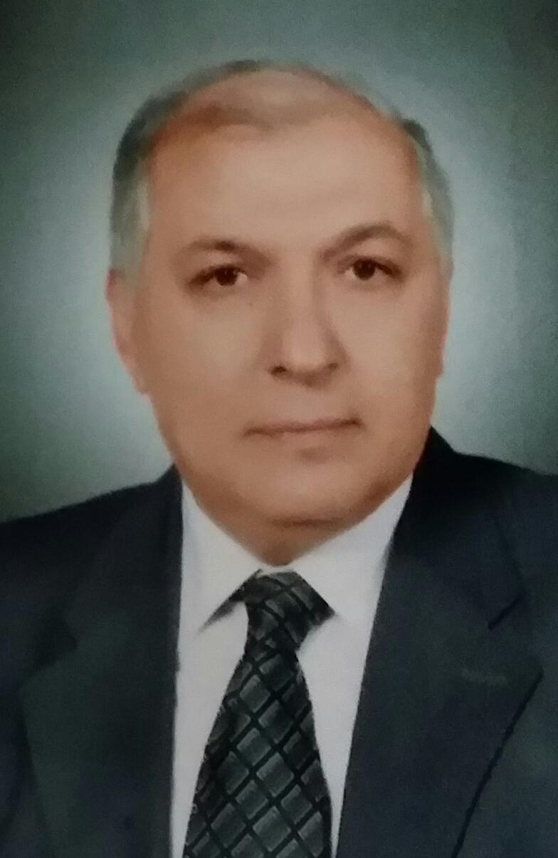 Mostafa Abdel Hameed Ahmed Mahmoud